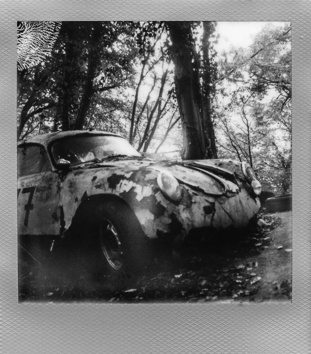 Autolegenden im Wald 1