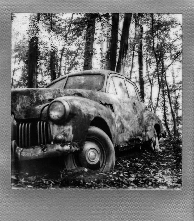 Autolegenden im Wald 11