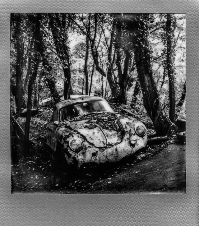 Autolegenden im Wald 12