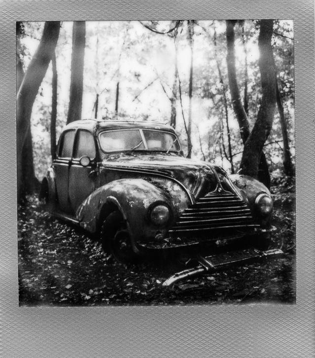 Autolegenden im Wald 2