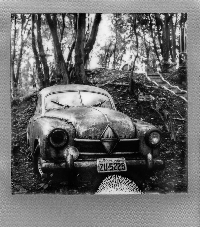 Autolegenden im Wald 3