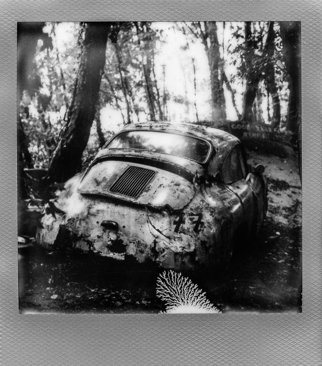 Autolegenden im Wald 4