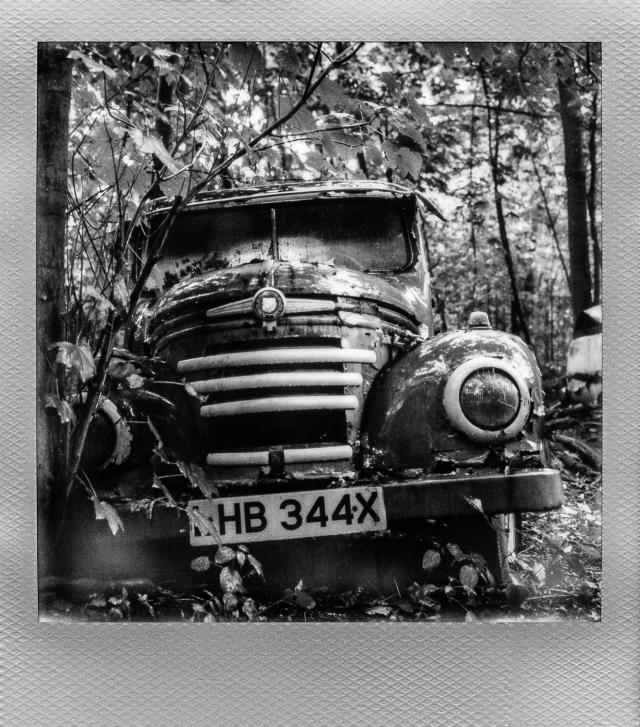 Autolegenden im Wald 6