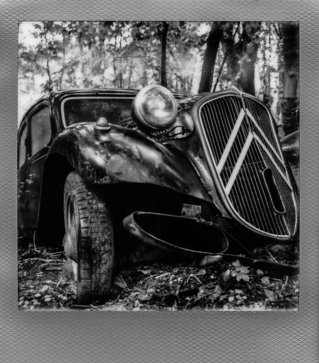Autolegenden im Wald 8
