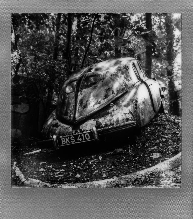 Autolegenden im Wald 9